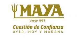 pag15_mayasur