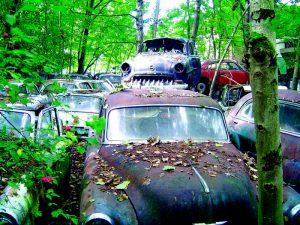 pag8-auto-abbandonate