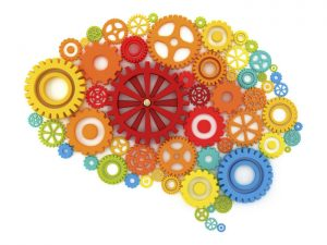 pag04_Brain-in-cogs