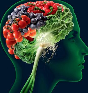 pag11_brain-food