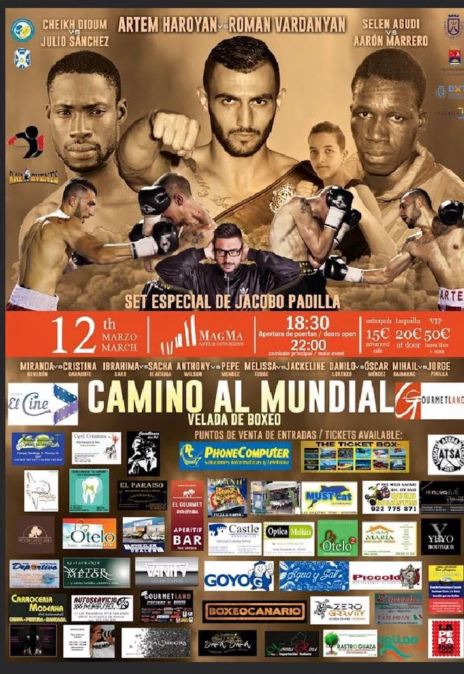 Professional boxing in the Magma Centre 12 March
