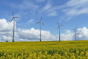 wind-power-1357419_640